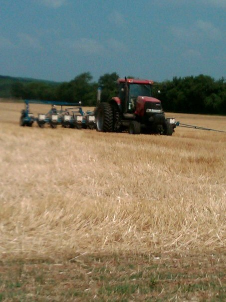 Planting a crop
